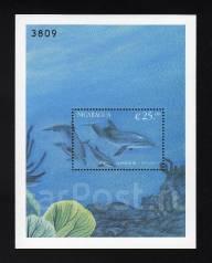 Никарагуа 2000 чистая, морская фауна