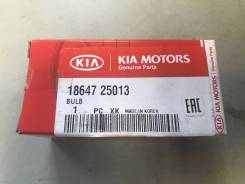 Лампа ксеноновая. Hyundai Veloster Hyundai Elantra Hyundai Avante Hyundai Ioniq Kia Cerato Kia Niro Kia K3 Kia Forte
