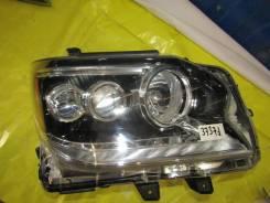 Фара. Lexus GX460, URJ150 Двигатель 1URFE. Под заказ