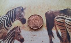Экзотика! Замбия. 1 нгве 1983 года. Земляной поросенок - трубкозуб.