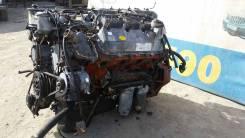 Двигатель в сборе. Daewoo DE12 Daewoo BS106 Daewoo BM090 Kia Granbird Kia Granto Hyundai: HD250, HD700, HD270, HD320, HD370, HD260, HD170, HD500, HD10...