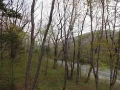 Продам участок на Чёрной речке. 1 000 кв.м., собственность, от частного лица (собственник). Фото участка
