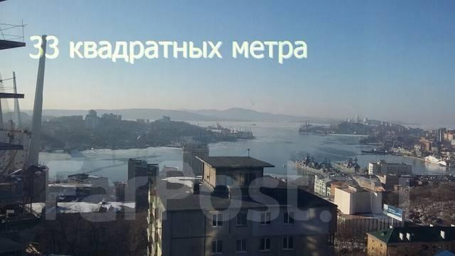1-комнатная, переулок Некрасовский 24. Центр, агентство, 35 кв.м. Вид из окна днем