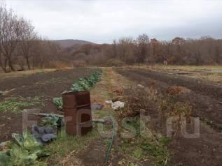 Земельный участок в Михайловском районе. Фото участка