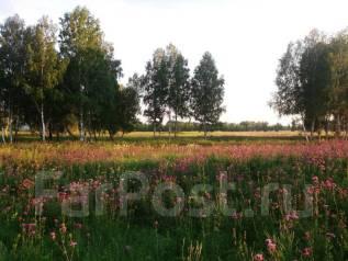 Продам земли сельскохозяйственного назначения. 2 150 000 кв.м., собственность, электричество, от частного лица (собственник)