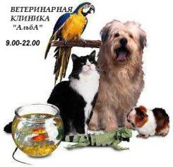 Ветеринарная Клиника! . Доступные цены! Акции!