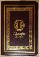 Onyx Boox C63L Akunin Book