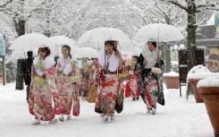 Япония. Токио. Экскурсионный тур. Токио по экономному, зимний тур