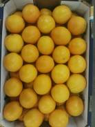 Апельсин. Под заказ