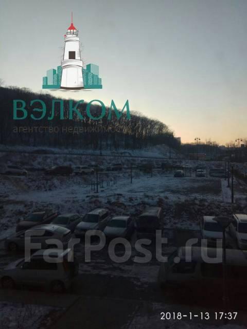 1-комнатная, улица Анны Щетининой 3. Снеговая падь, агентство, 47кв.м. Вид из окна днем