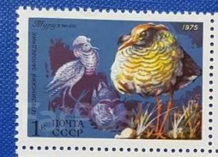 1975 СССР. Фауна СССР. Турухтан. 1 марка Чистая