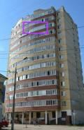 1-комнатная, улица Василия Каменского 24. Парковый, частное лицо, 46 кв.м.