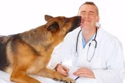 Врач ветеринарный. Пограничное управление. Г. Бикин