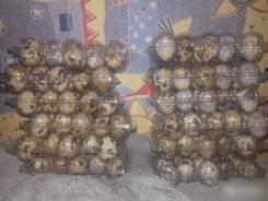 Яйцо инкубационное сезон 2017-2018. Под заказ