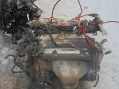 Двигатель в сборе. Honda Elysion, RR1, RR2 Двигатель K24A
