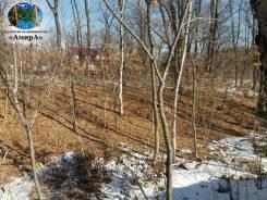 Садгородская д.10 напротив Green park площадь участка 1686 кв. м. 1 686кв.м., собственность. Фото участка