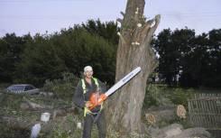 Спилим деревья на вашем участке на выгодных для вас условиях.