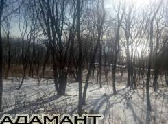 Земельный участок, бухта Емар, мыс Вилкова. 1 040 кв.м., собственность, от агентства недвижимости (посредник). Фото участка