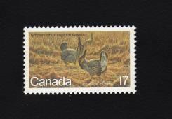 Канада 1980 чистая, фауна, птицы