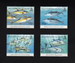 Вознесения 2005 чистые, фауна, рыбы