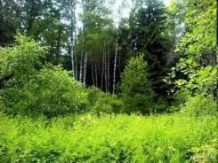 Участок ИЖС Белоярский район. 20 000 000кв.м., собственность, электричество