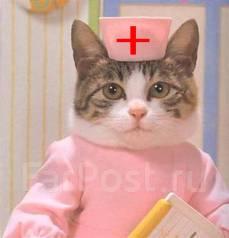 Выполняем работы по медицине. Качественно и недорого.