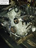 Двигатель Qqdb на Ford Focus объем 1.8 л.