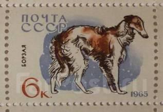 1965 СССР. Борзая. 1 марка Чистая