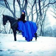 """Конный клуб """"Fast Horse"""" приглашает на конные прогулки и тренировки!"""