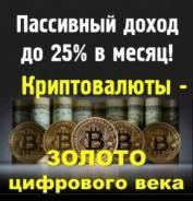 Консультации в сфере инвестиций в криптовалюту - 3000 р