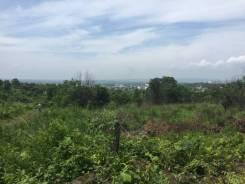 Продам отличный участок п. Угловое. 1 000кв.м., собственность, электричество, от частного лица (собственник). Фото участка