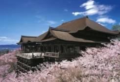 Япония. Токио. Экскурсионный тур. Япония! Цветение Сакуры! Вылеты по вторникам!