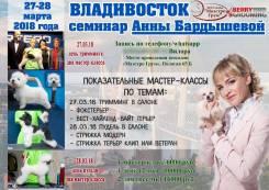 Семинар по салонному грумингу от Анны Бардышевой ! 27-28 марта 2018