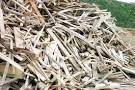 Примем древесные отходы