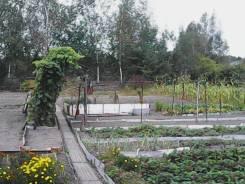 Продаю дачу, платформа садовая 10 соток, свет, Вода. 5 мин от электрички. От агентства недвижимости (посредник)