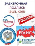 Электронная подпись (ЭЦП) для ФНС, Госуслуги, ОФД, ЕГАИС.