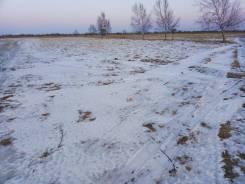 Продам земельный участок в с. Борисовка. 1 000 кв.м., собственность, электричество, от агентства недвижимости (посредник). Фото участка