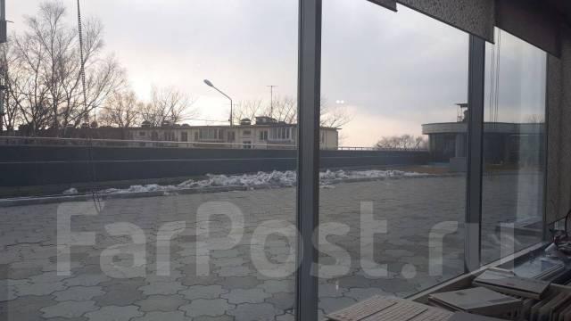Отличное помещение для коммерческой деятельности. Улица Ильичева 4, р-н Столетие, 416 кв.м. Вид из окна