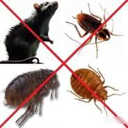 Уничтожение, тараканов, клопов навсегда от 900 р. Жми Срочно! Хабаровск