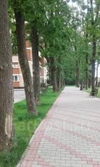 1-комнатная, улица Героя Сарабеева 7. агентство, 44 кв.м.