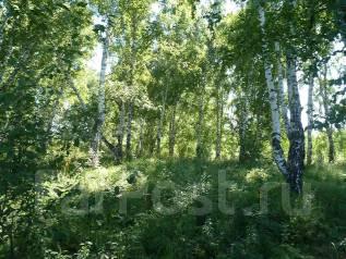 Продам участок в районе Пединститута. 600 кв.м., собственность, электричество, вода, от частного лица (собственник)