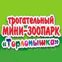 Уборщик. ИП Торлопова И.В. Улица Дикопольцева 29б