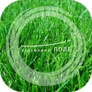Газон, газонная трава. Под заказ