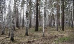 Участок 18 соток на 20 км. Байкальского тракта. 1 800 кв.м., собственность, электричество, от агентства недвижимости (посредник)