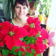 Продам комн цветы