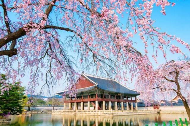 """Южная Корея. Сеул. Экскурсионный тур. Тур в Южную Корею """"Сеул для всех! """", 5 дней"""
