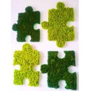 Вертикальное озеленение, зеленая стена, вывески и декор. Топиарий.