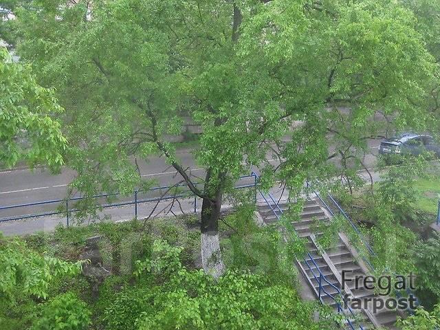 1-комнатная, улица 50 лет ВЛКСМ 2. Трудовая, 35кв.м. Вид из окна днем