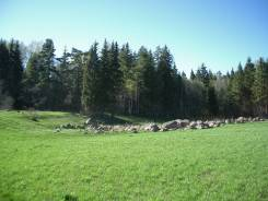 Массив 49 га в окружении леса, рядом с КП Горки-гольф-курорт. 486 500кв.м., собственность, электричество