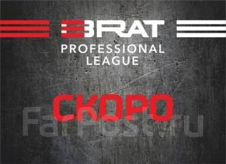 Профессиональная Лига ММА предлагает партнерство!
